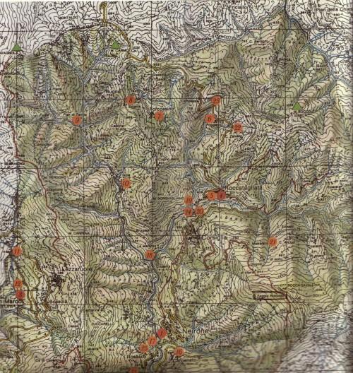 Map Neirone region P 1